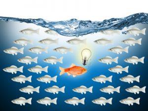 goldfische; individualität; individuell; gegen den strom; fisch; goldfisch; fische; anders; einzelgänger; denkend; mut; denken; anführer; vision; business; visionär; gewinner; konzept; wasser; welle; bewegung; menge; menschenmenge; kollegen; dagegen sein; meinung; richtungswechsel; schwarm; mutig; neu; neue wege; massenphänomen; stress; breite masse; masse; schlau; clever; problem; lösung; idee; geschäftsidee; mainstream; mobbing; inovativ; inovation; kreativ; kreativität; führung; ankämpfen; gruppe; individualität; einzelgänger; anfhrer; visionr; massenphnomen; lösung; geschäftsidee; kreativität; erfahrung; ankämpfen;